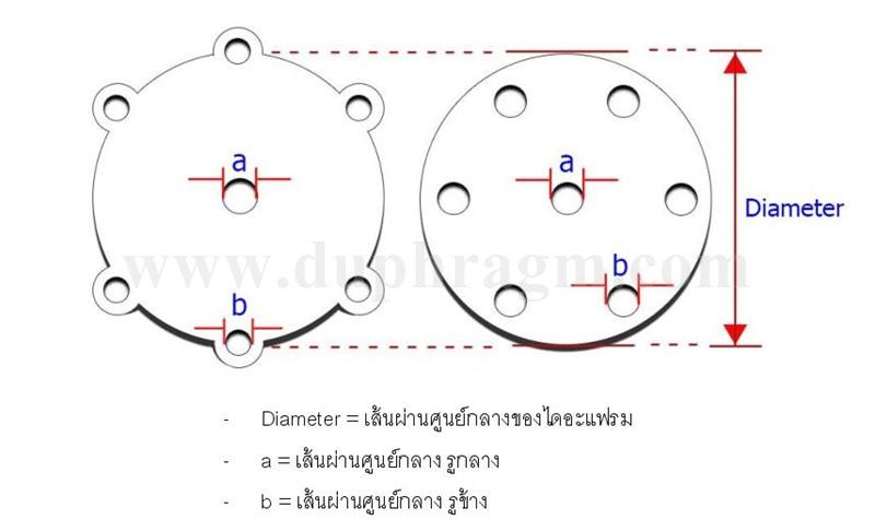 Diaphragm for Gas Application-page-003klijk